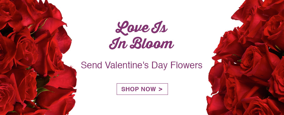 Love is In Blooms