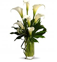 Flower Bouquets: White Calla Lily Tribute