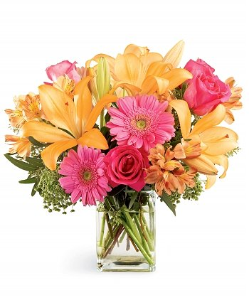 Flower Bouquets: Splash of Color Bouquet